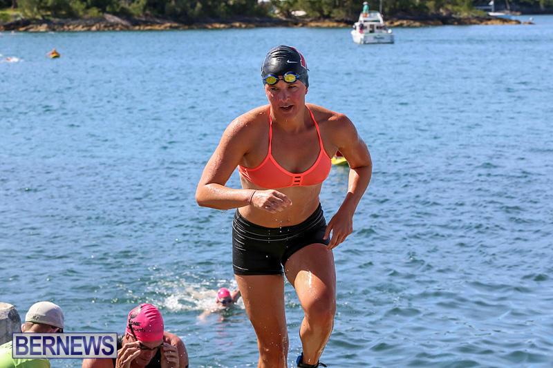 Tokio-Millennium-Re-Triathlon-Swim-Bermuda-June-12-2016-18