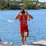 Tokio Millennium Re Triathlon Swim Bermuda, June 12 2016 (2)