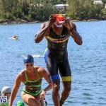 Tokio Millennium Re Triathlon Swim Bermuda, June 12 2016 (64)
