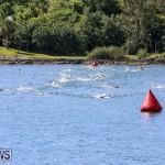 Tokio Millennium Re Triathlon Swim Bermuda, June 12 2016 (7)