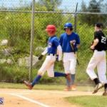 Yao Baseball Cubs-Marlins Bermuda June 29 2016  (3)