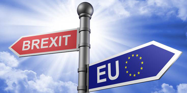 Image result for berexit