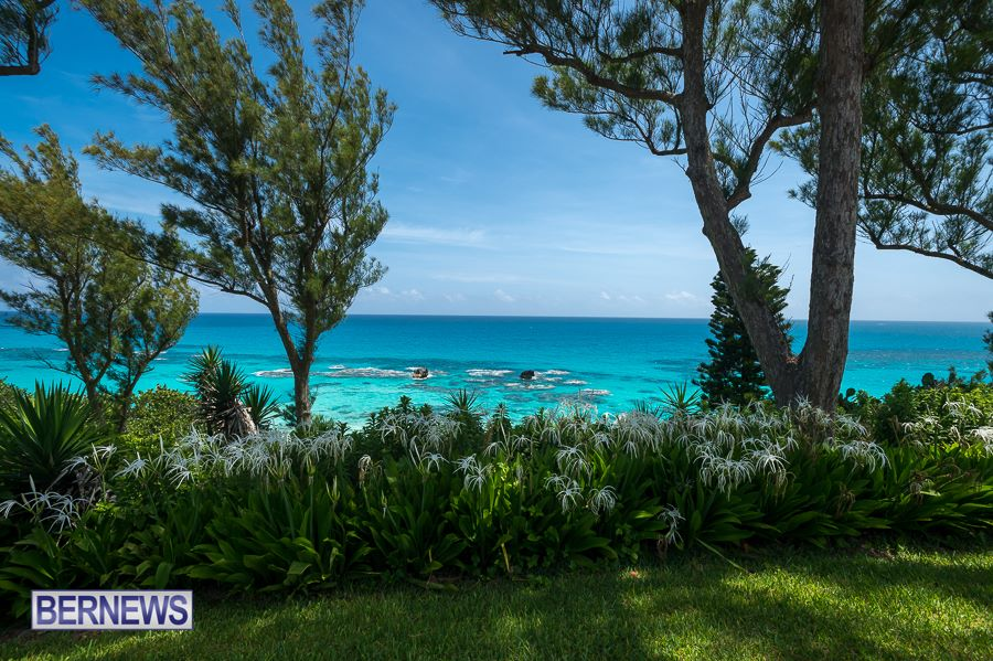1036 - Blue water Bermuda Generic July 2016