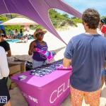 ACIB Canada Day BBQ Beach Party Bermuda, July 2 2016-11