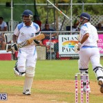 Cup Match Day 1 Bermuda, July 28 2016-200