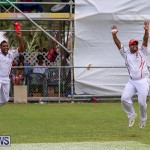Cup Match Day 1 Bermuda, July 28 2016-219