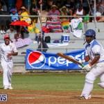 Cup Match Day 2 Bermuda, July 29 2016-112