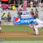 Cup Match Day 2 Bermuda, July 29 2016-148