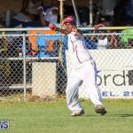 Cup Match Day 2 Bermuda, July 29 2016-160