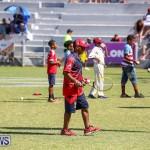 Cup Match Day 2 Bermuda, July 29 2016-39