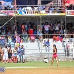 Cup Match Day 2 Bermuda, July 29 2016-45