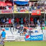 Cup Match Day 2 Bermuda, July 29 2016-46