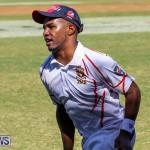 Cup Match Day 2 Bermuda, July 29 2016-52