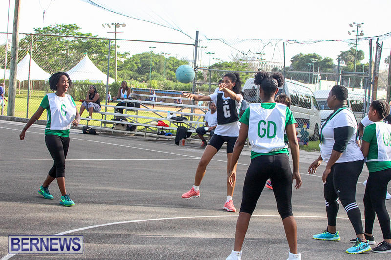 Netball-Bermuda-July-2016-3