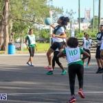 Netball Bermuda, July 2016-34