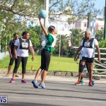 Netball Bermuda, July 2016-7