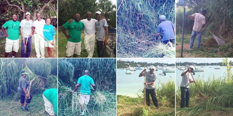 Sandys Cleanup Bermuda July 15 2016 Collage 3