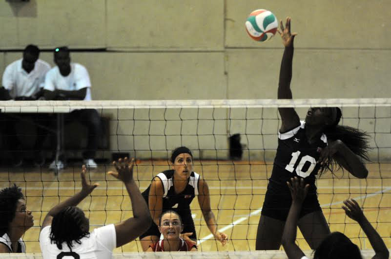 Bermuda-volleyball