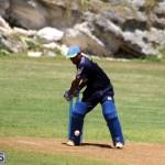 Cricket Bermuda August 2016 10
