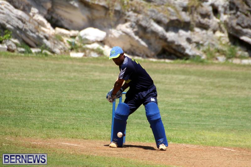 Cricket-Bermuda-August-2016-101