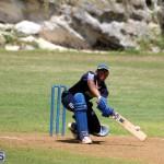 Cricket Bermuda August 2016 1