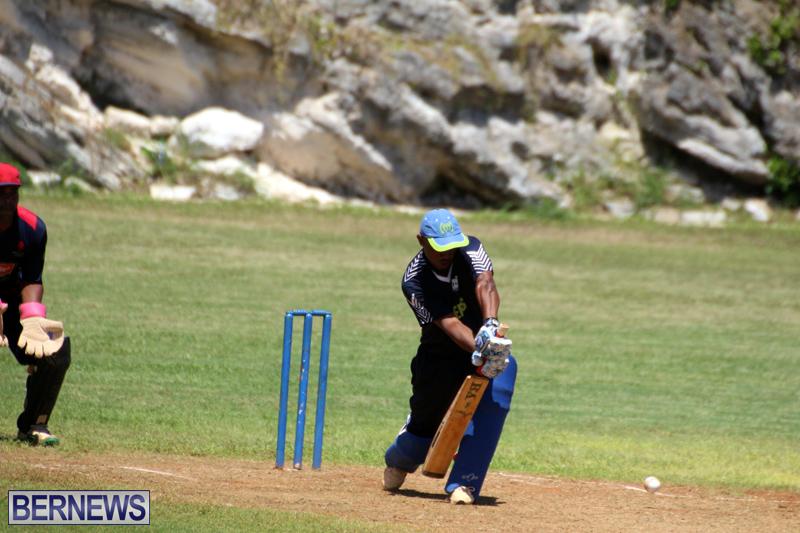 Cricket-Bermuda-August-2016-111