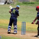 Cricket Bermuda August 2016 15