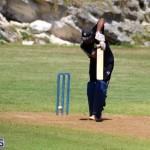 Cricket Bermuda August 2016 16