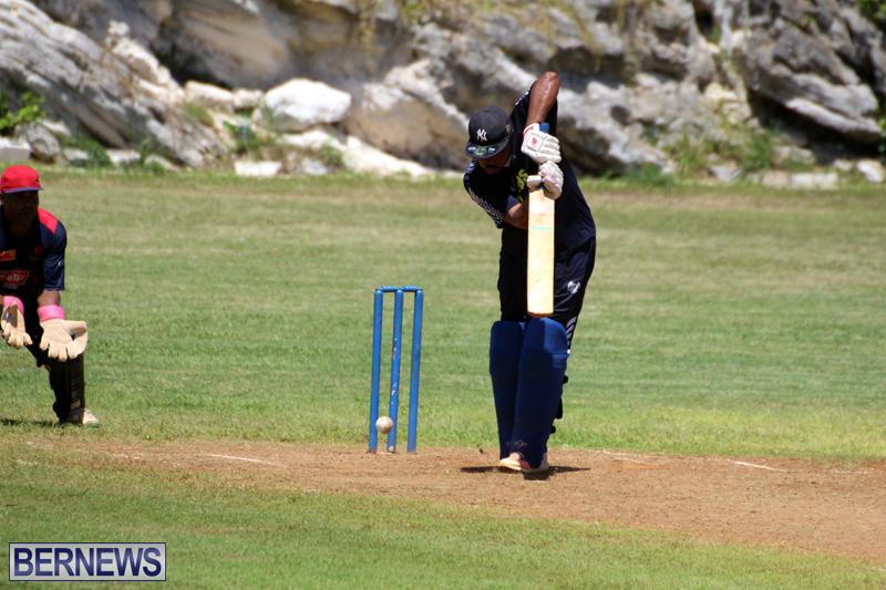 Cricket-Bermuda-August-2016-161