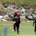 Cricket Bermuda August 2016 19