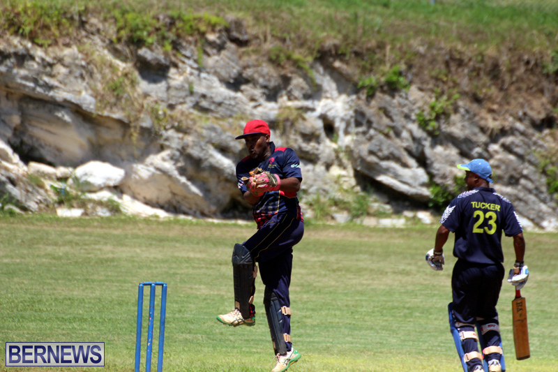 Cricket-Bermuda-August-2016-191