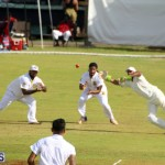 Cricket Bermuda August 2016 20
