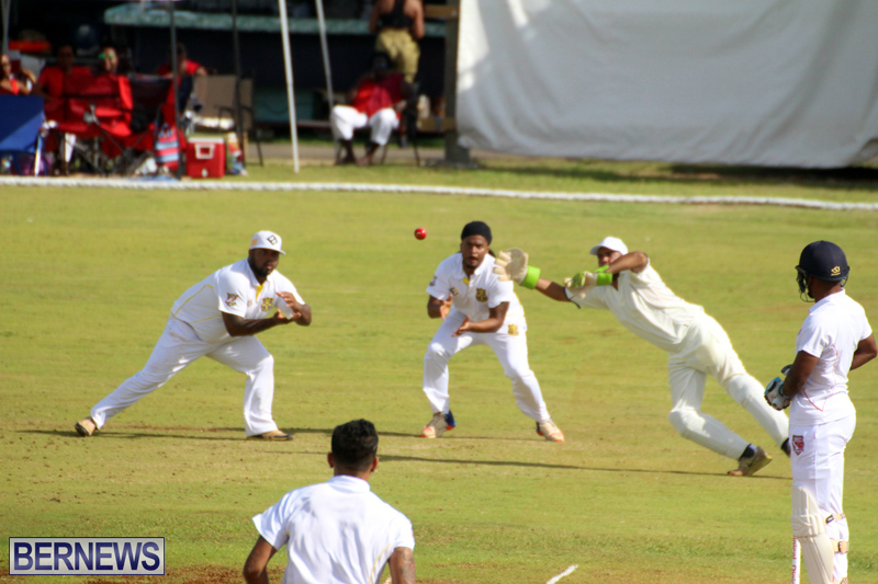 Cricket-Bermuda-August-2016-20