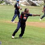 Cricket Bermuda August 2016 2