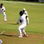Cricket Bermuda August 2016 21