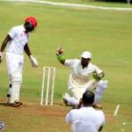 Cricket Bermuda August 2016 26