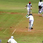 Cricket Bermuda August 2016 27
