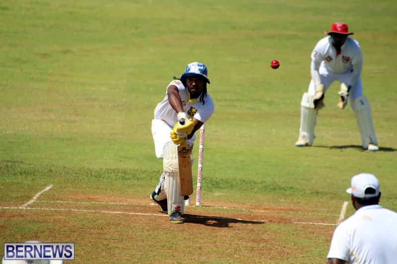 Cricket-Bermuda-August-2016-30