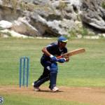 Cricket Bermuda August 2016 3