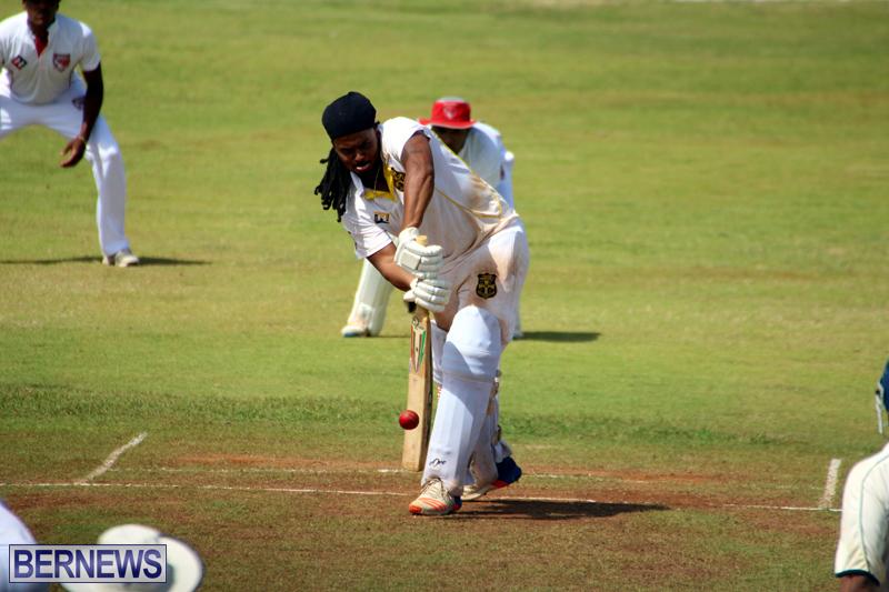 Cricket-Bermuda-August-2016-311