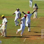 Cricket Bermuda August 2016 35