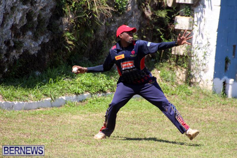 Cricket-Bermuda-August-2016-51