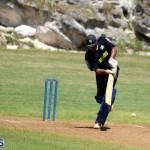 Cricket Bermuda August 2016 6