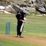 Cricket Bermuda August 2016 7