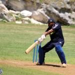 Cricket Bermuda August 2016 8