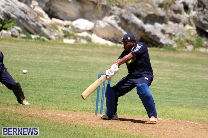 Cricket-Bermuda-August-2016-81