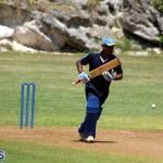 Cricket Bermuda August 2016 9