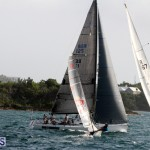 Sailing Bermuda August 2016 (16)