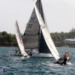 Sailing Bermuda August 2016 (17)