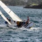 Sailing Bermuda August 2016 (2)